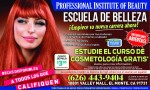 PROFESSIONAL INSTITUTE OF BEAUTY