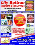 Lily Beltran Insurance & Taxes Servives